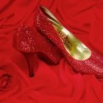 Programa de final de semana: exposição sobre sapatos no Floripa Shopping!